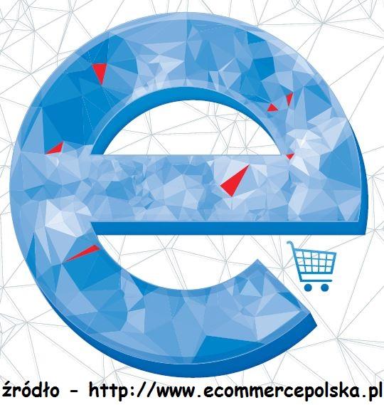 raport ecommerce 2014